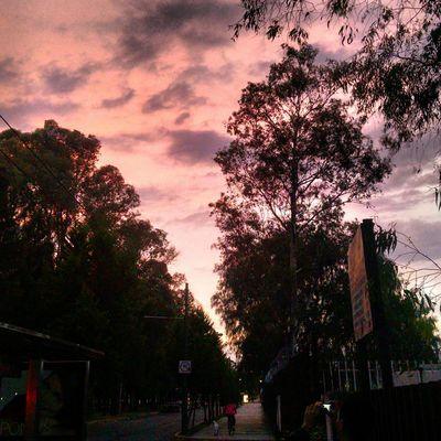 Cielo Rosa Mexico DF Cielo Y Nubes  First Eyeem Photo