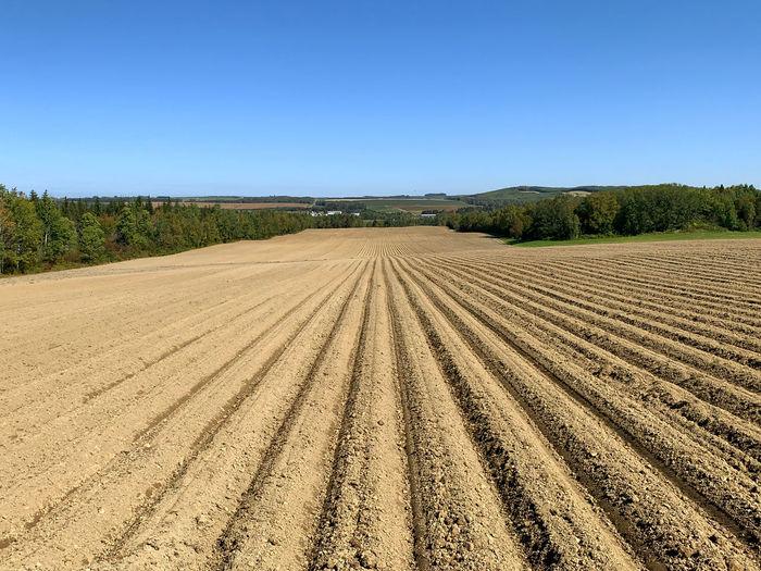 Farm field in