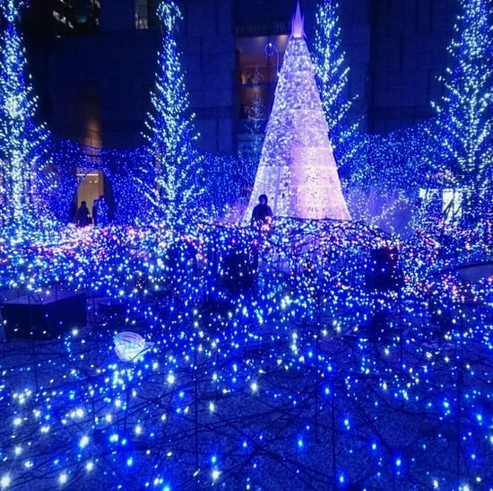 The Culture Of The Holidays Relaxing Taking Photos Hi! Check This Out Hello World EyeEm Best Shots Japan Beauty Tokyo Blue 汐留 Illumination My Country In A Photo