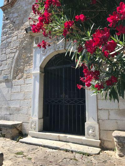 Saint-Paul-de-Vence Flower Door Architecture Building Exterior Red Outdoors Built Structure Day No People