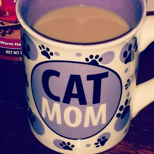 Doctor Who and coffee on Christmas Day CatLadyForlife Catmom Whovian Timeofthedoctor christmas
