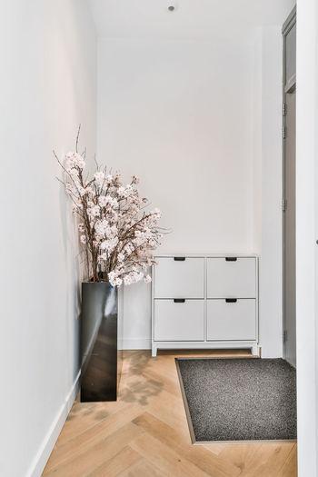 White flowering plants on hardwood floor at home