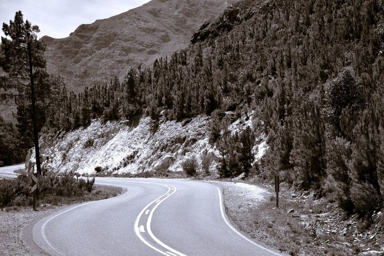 Empty road amidst trees and mountains