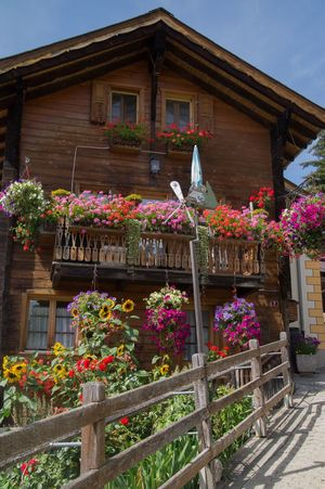 saint martin,valais,swiss Architecture Beauty In Nature Bouquet Building Exterior Built Structure Collection Culture Day Decoration Flower Flower Shop Fragility Freshness Growth Hanging In A Row Low Angle View Multi Colored Nature Outdoors Outside Plant Potted Plant Vacations Variation