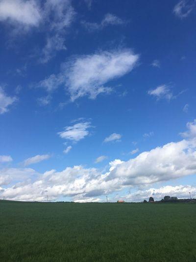Landscape Bavaria Alpenvorland Upper Bavaria Blue Sky