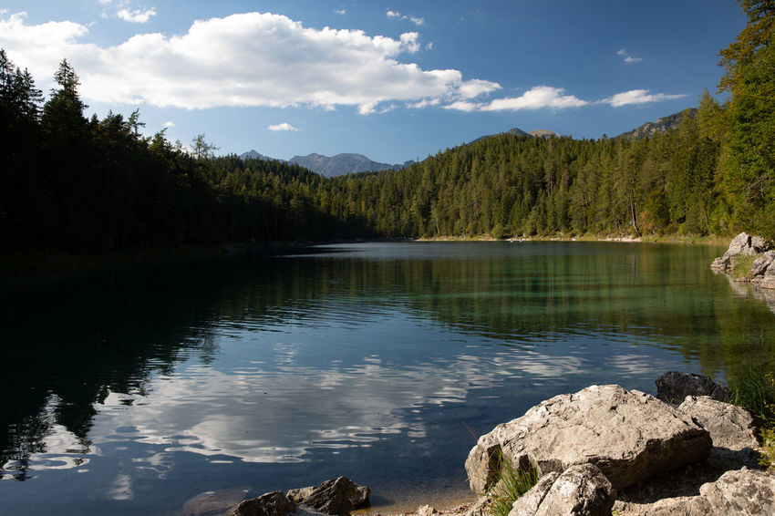 Bavaria Eibsee Tadaa Community Animal Beauty In Nature Cloud - Sky Day Lake Mountain Mountain Range Nature No People Non-urban Scene Outdoors Plant Reflection Scenics - Nature Sky Tranquil Scene Tranquility Tree Untersee Vertebrate Water