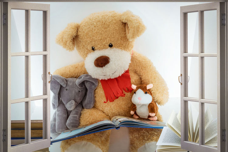 Toys reading a book Childhood Close-up Day Indoors  No People Real People Stuffed Toy Teddy Bear Toy Window