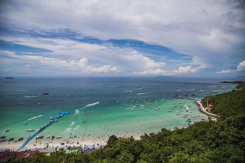 Water Sea Beach Tree Sand Nautical Vessel Blue Beauty UnderSea Sky