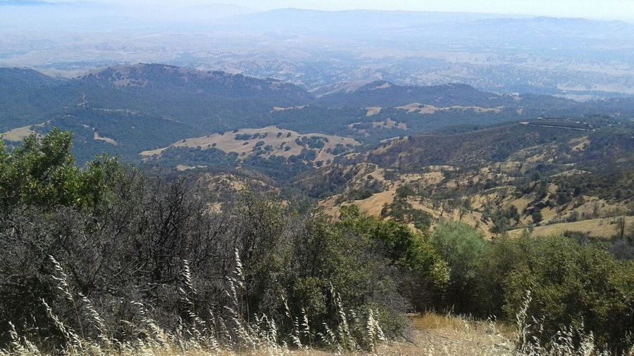 Nofilter Mt.Diablo, California Notmybestpicture Relaxing