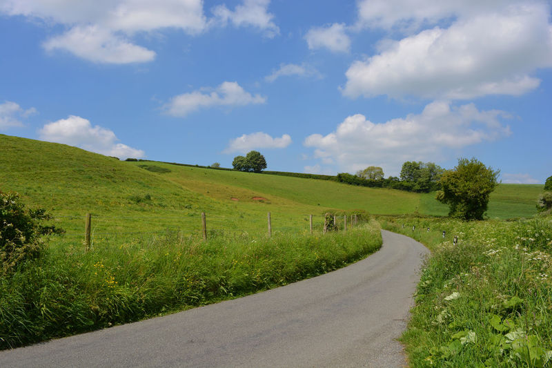 Country lane in summer through pasture fields Agriculture Beauty In Nature Cloud - Sky Country Road Countryside Day Dorset Field Grass Green Color Growth Landscape Nature No People Outdoors Road Rural Scene Scenics Sky Summer Summertime The Way Forward Tranquil Scene Tranquility Tree