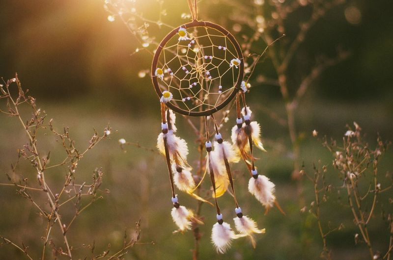 Calm Sunset Dreamy Golden Hour EyeEmNewHere Nikon D5100  EyeEm Selects Dreamcatcher Dreamlike Nature Art And Craft Feather