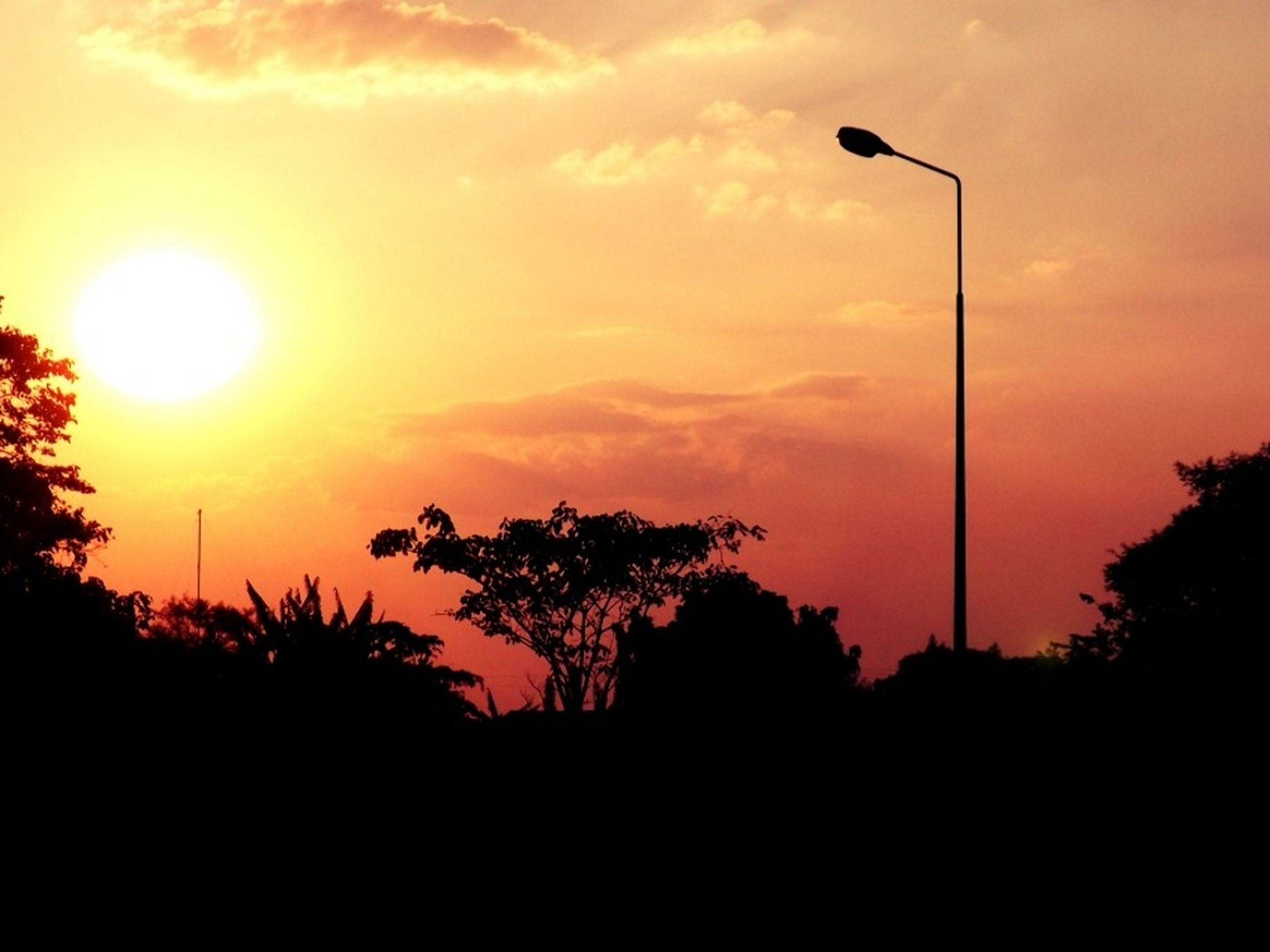 sunset, silhouette, sun, street light, tree, sky, orange color, beauty in nature, tranquility, scenics, tranquil scene, nature, sunlight, idyllic, sunbeam, cloud - sky, lighting equipment, low angle view, no people, outdoors