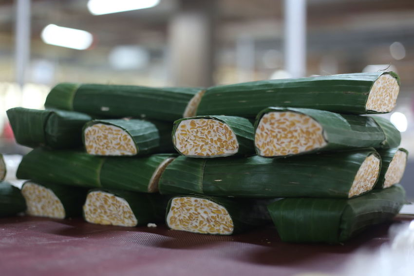 Tempe, traditional healthy food of Indonesia, made of soy bean. INDONESIA Tempe Asian Food Close-up Day Focus On Foreground Food Food And Drink Freshness Green Color Indoors  Large Group Of Objects No People Selective Focus Still Life Table Traditional Food Traditional Food Of Indonesia Wellbeing