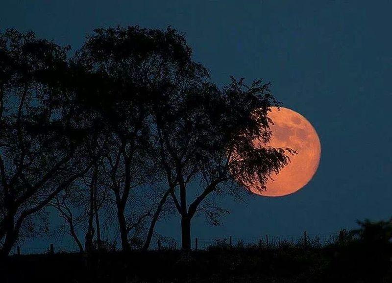 Full Moon Teardrop Sad :( Alone