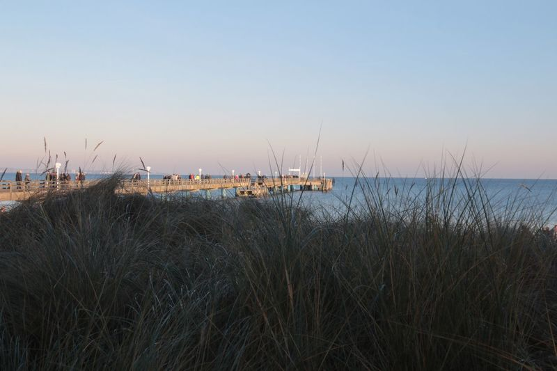 Nature Sea Baltic Sea Water Tranquil Scene Clear Sky Beauty In Nature Outdoors Horizon Over Water Travel Destinations Scharbeutz Grass Bridge - Man Made Structure