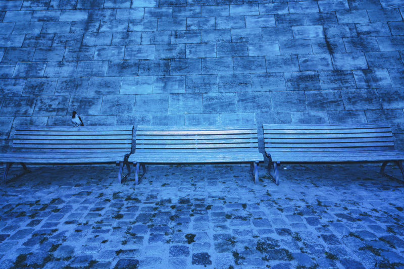 Three Wooden Benches at Spree River Bank with Starling Berlin Germany 🇩🇪 Deutschland Color Image Outdoors No People Seat Bench Absence Winter Day Wall Spree River River Bank  Dusk Blue Built Structure Stone Wall Architecture Wall - Building Feature Empty Relaxation Flash Nature Park Bench