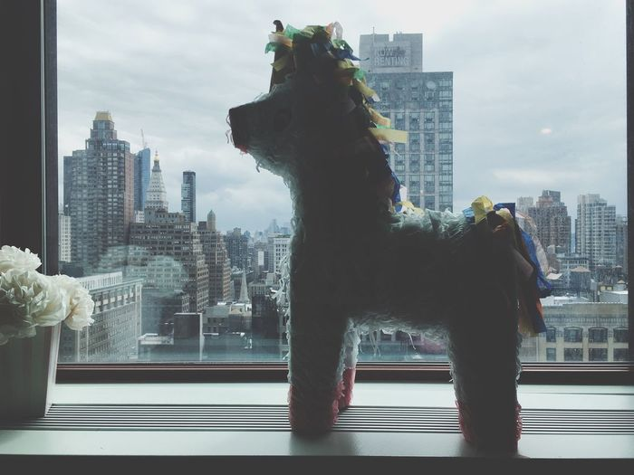 Horse Window NYC New York New York City Flowers City Cityscape Cloudy Skies View From The Window... Paper Skyscraper Paperhorse Pony Piñata