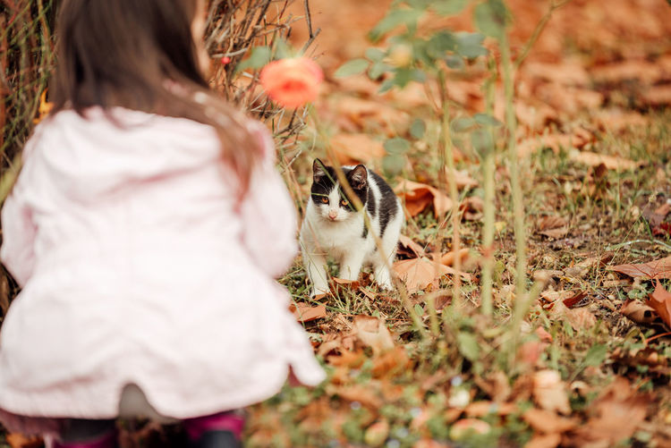 Young girl play with cat outdoors