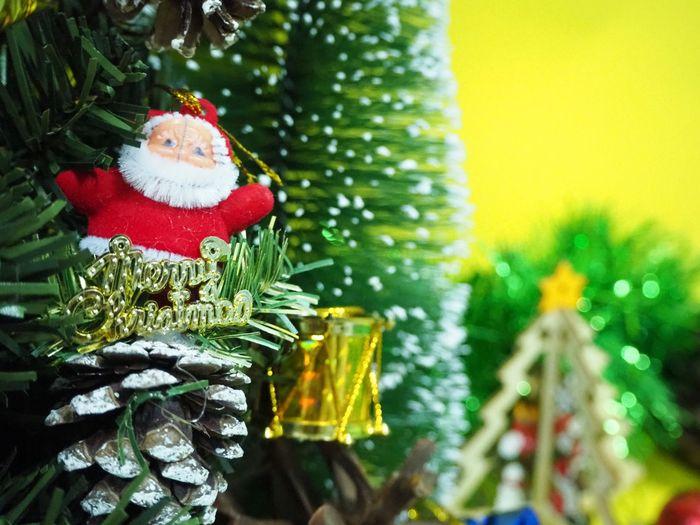 Merry xmas and happy new year Santa Tree Christmas Decoration Christmas Ornament Christmas Celebration christmas tree Tradition Holiday - Event Christmas Lights Christmas Present Pine Cone