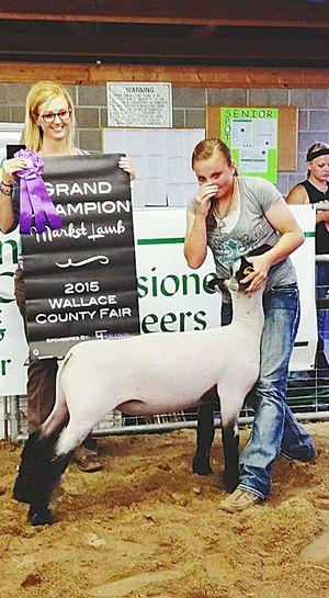 Love this lamb!!! First Eyeem Photo