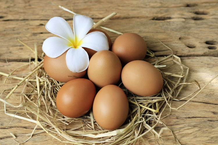 Eggs are placed on an old wooden floor and put on a black plate. Brown Close-up Egg Food Food And Drink Fragility Freshness Hay Healthy Eating High Angle View Indoors  Nature No People Plant Raw Food Still Life Vulnerability  Wellbeing White Color Wood - Material