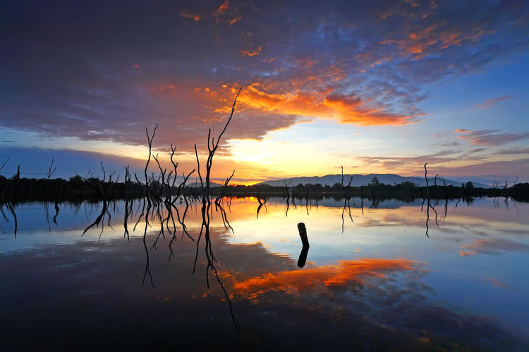 Sunrise over a calm lake and colorful sky, clouds and silhouette of dead trees in the reflection water Water Sunset Sky Reflection Beauty In Nature Scenics - Nature Cloud - Sky Tranquil Scene Tranquility Orange Color Lake Idyllic Nature Silhouette Non-urban Scene Outdoors Dramatic Sky Standing Water No People Clouds And Sky Cloudscape Silhouette Beautiful Beautiful Nature Travel Colorful Sky Colorful Nature Adventure Morning Sky Heaven Dry Countryside Countryside Landscape