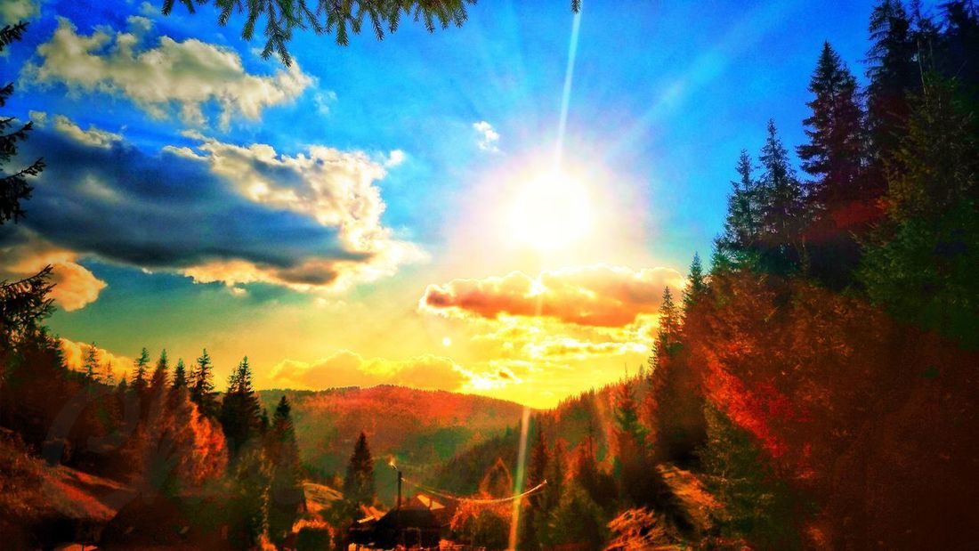 Blue Sky And Clouds Forest Pine Woodland Dawn Of A New Day Light And Shadow Mountains And Valleys Clouds And Sky Tree Sunset Sunlight Sun Sunbeam Sky Cloud - Sky Landscape Sunshine Silhouette Sunrays Sunrise Shining Rays Woods Treetop Peaceful Dramatic Sky Sky Only Outline Scene Energy Healthy