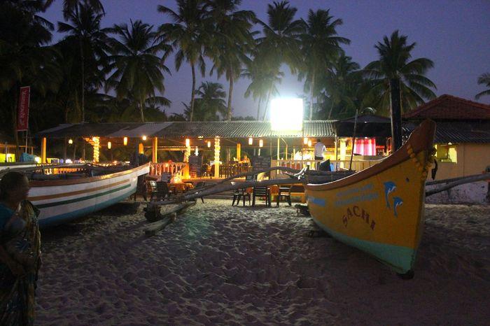 Night Illuminated Palm Tree Party - Social Event Sky Beach Bar Beach Resort View Goa Palolem Beach