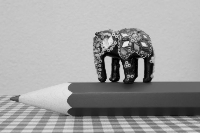Black Blackandwhite Black And White Black & White Big Or Small Small Or Big HJB Abstract Elephant Walking On