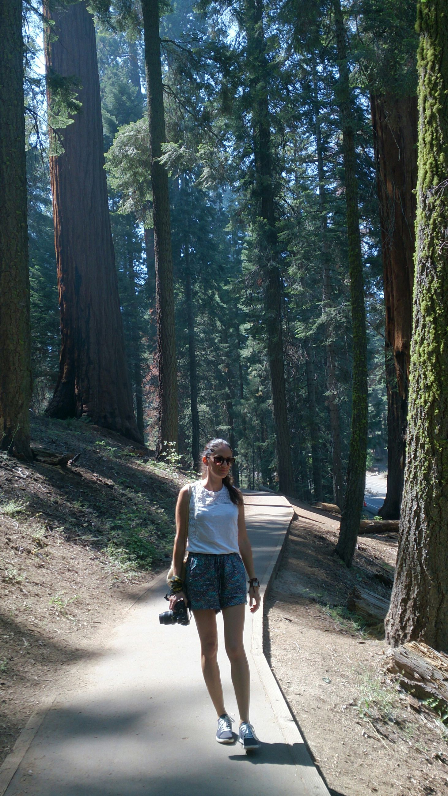full length, tree, casual clothing, lifestyles, person, leisure activity, young adult, forest, looking at camera, front view, standing, tree trunk, young women, portrait, the way forward, walking, day, smiling