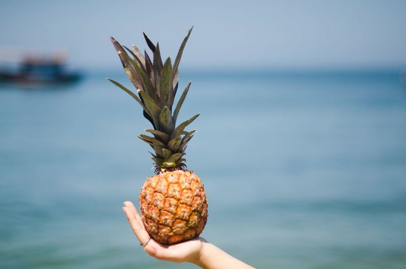 Cropped Hand Of Woman Holding Pineapple At Beach