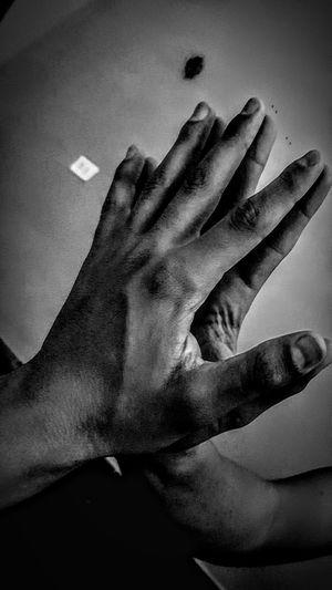 hands Human Hand Palm Close-up