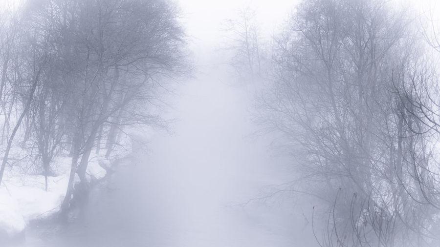 misty river in Hokkaido,Japan Iwamizawa Nature Photography Landscape_photography 岩見沢 北海道 Simplicity Monochrome モノトーン Olympus OLYMPUS PEN Lite E-PL6