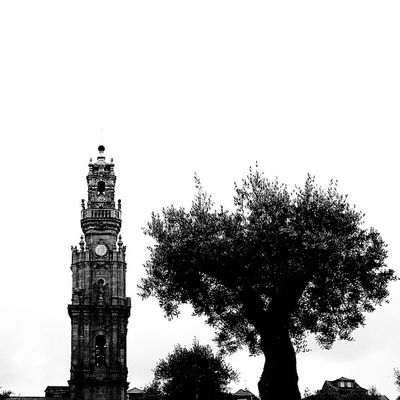 #igers_porto #igers #p3top #iphone5 #iphonesia #iphoneonly #iphonegraphy #instagood #instagram #instalove #instamood #portugal #porto #instagramers #instamood #oporto #porto2c #portugal #portugaligers #portugal_em_fotos #portugal_de_sonho #portugaloteuolh Iphonegraphy Portugaligers Porto Igers_porto Canon Portugaldenorteasul Portugal Portugaloteuolhar Iphoneonly Eos650 Iphonesia Porto2c Instagram Portugal_em_fotos IPhone5 Ig_portugal Oporto Torredosclerigos Instamood Portugal_de_sonho P3top Igers Instagramers Instagood Instalove
