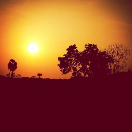 Showcase April Morning Sun Sunrise Beautiful View Loveit♥ Takeapicture