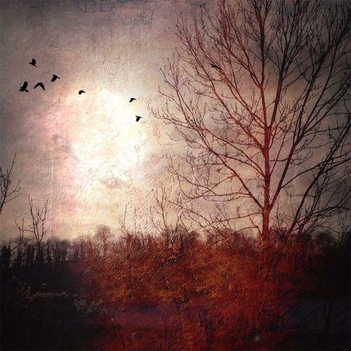 La Pleine Lune Suspendue
