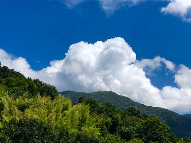 A Huge Mass of Cumulus Clouds over Mt. Haigamine. (180825-181004) Cloud - Sky Sky Beauty In Nature Tree Plant Tranquility Scenics - Nature Nature Tranquil Scene Environment Non-urban Scene Mountain Green Color Growth Blue Idyllic Day Outdoors No People Low Angle View