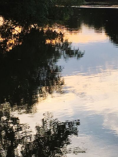 Evening Reflections on the water during the sunset -- Reflection Sunset Water Reflections Thames River Southern Ontario Shadows & Lights Awesome Shot Summers In Ontario Enjoying Life Chatham Kent Love The Colours Of A Summer Night😊🌙💞 My Passion ❤