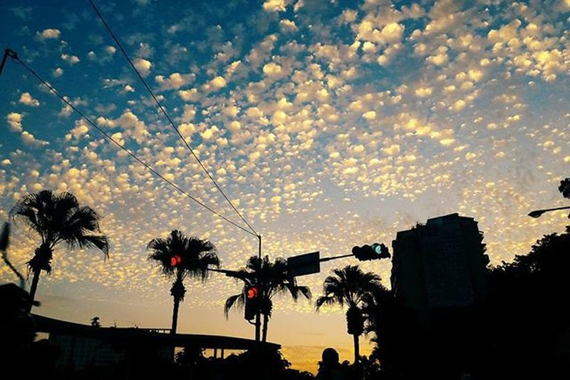 晚安世界, 天空好久沒有這麼漂亮的對我微笑了,幾乎忘了心中的憂傷及煩惱。 Today's sky with those special and inspiring textures. Vscocam Instadaily Skyporn Sunset SkyOfTheDay Xhinmania Follow4follow PhonePhotography