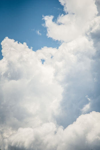 Cloud - Sky Sky Beauty In Nature Cloudscape White Color Backgrounds Tranquility Nature Day Scenics - Nature Idyllic No People Low Angle View Fluffy Blue Tranquil Scene Outdoors Softness Meteorology