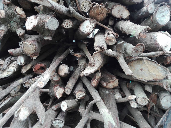 Firewood for Full Frameset on fire Backgrounds Large Group Of Objects No People Close-up Indoors  Day Animal Themes