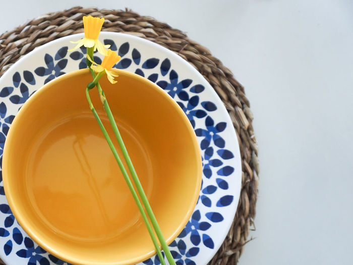 Table setting for easter party Easter Easter Ready Easter Sunday Table Table Setting Plant Plates Holiday Celebration Holidays Yellow Yellow Flower Plate Studio Shot Yellow Close-up Food And Drink