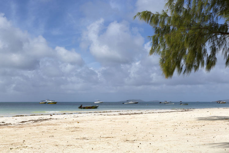 Sea Beach Sky Water Land Cloud - Sky Horizon Over Water Horizon Scenics - Nature Sand Beauty In Nature Day Tranquil Scene Tranquility Nature Nautical Vessel Outdoors Transportation Tree No People Turquoise Colored Seychelles Seychelles Islands