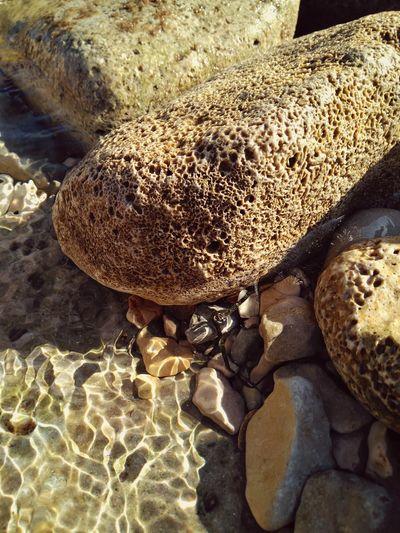 Aquatic brain Likearock WaterErosion Boulders Beach