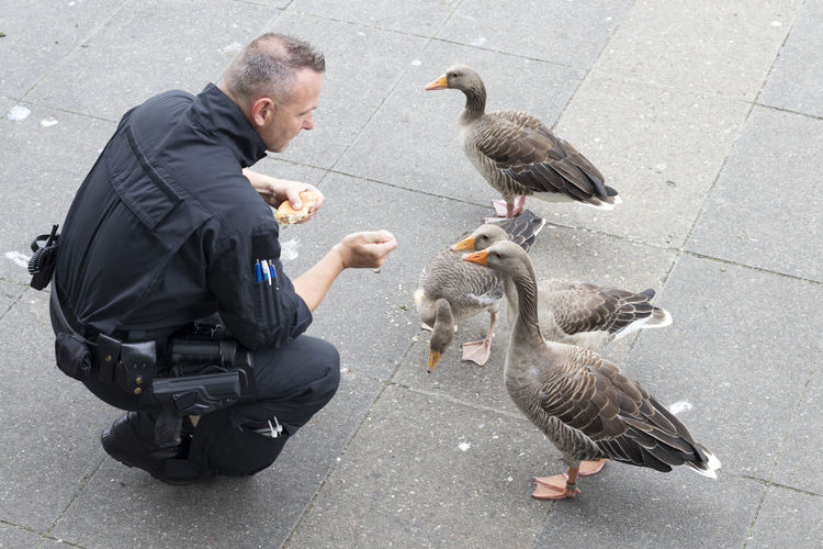 Feeding  G20 Gipfel G20 Summit Hamburg NOG20 ONLYHUMAN Axvo Beak Bird Day Duck Ente Futtern Goose One Person Only Human Outdoors Police Real People Street Water Water Bird Stories From The City Small Business Heroes