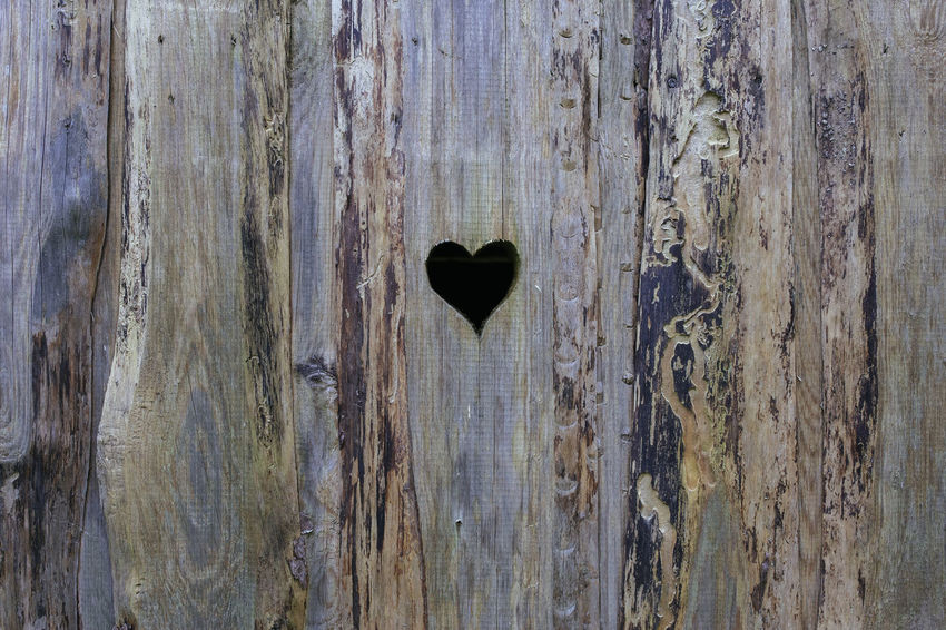 Art Is Everywhere Close-up Door Doorporn Heart Heart Shape Heart ❤ Hearts Heartshape Love Outdoors Textured  Wood Wood - Material Wooden Wooden Texture