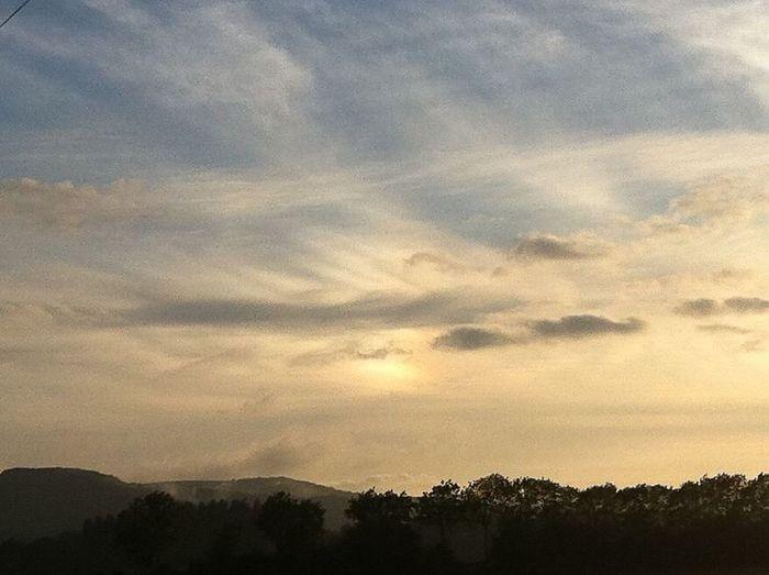 Sun Set Amberly