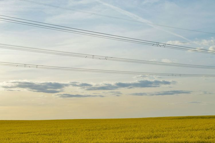 Clouds And Sky No People Outdoors Sky Cloud - Sky Nature Connection Agriculture Field Cable Landscape Tranquil Scene Electricity Pylon EyeEm Best Shots EyeEm Nature Lover EyeEmNewHere