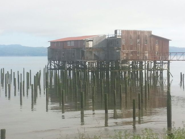 Water Outdoors Stilt House No People Built Structure Day Sea Architecture Sky Building Exterior Awe Nature Tranquility Reflection Beauty In Nature Tranquil Scene Water's Edge Northcoastrecovery Columbia River Astoria, Oregon Astoria, OR Environment Horizon Over Water Tide Fog