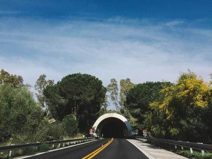 Tree Road The Way Forward Transportation Sky Day No People Outdoors Nature On The Road Tonnel Sicily